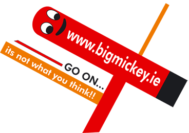 BigMickey.ie